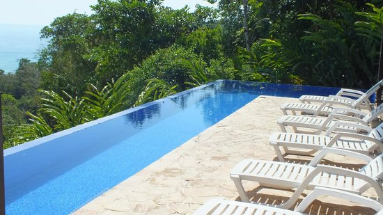 TikiVillas Rainforest Lodge: La piscine...