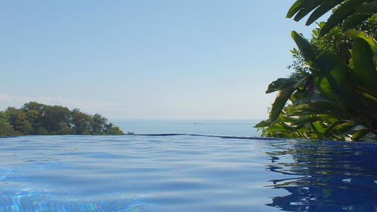 TikiVillas Rainforest Lodge: La piscine : magnifique !