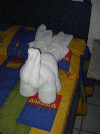 Hacienda de Vallarta Las Glorias:                   Cute towel animal