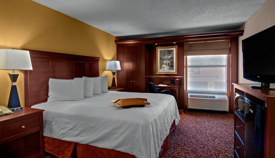 Hampton Inn & Suites Williamsburg-Richmond Rd.: 1 King Bed Standard