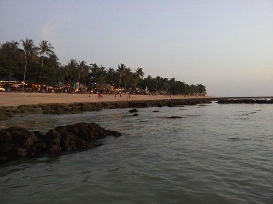 Newozone Resort & Spa: View of beach