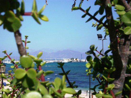 Caleta Playa Apartments:                   From the balcony