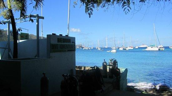 Bequia Dive Adventures:                   Dive Shop overlooking Admirality Bay