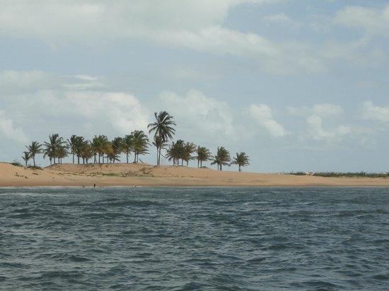 Piaçabuçu, AL:                   dunas