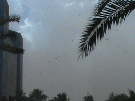 DoubleTree Suites by Hilton Hotel Phoenix: Sand storm approaching