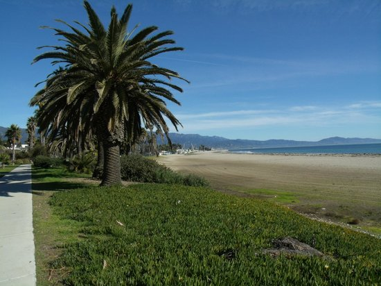 Shoreline Park: Bike and walking paths along the beach heading towards the harbor