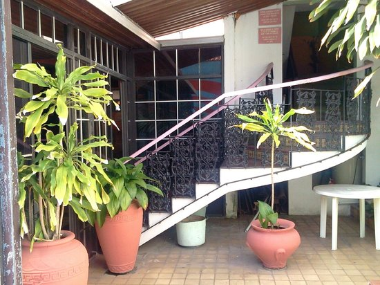 Parador Oasis :                   Side stairs