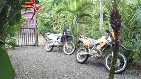 ‪‪Cabinas Tropicales‬:                   DRZ-400s safely parked at Cabinas Tropicales
