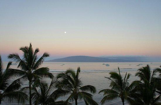 لاهينا شورز بيتش ريزورت: 5 am Ocean View 