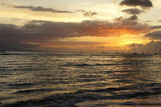拉海納海濱沙灘度假飯店照片