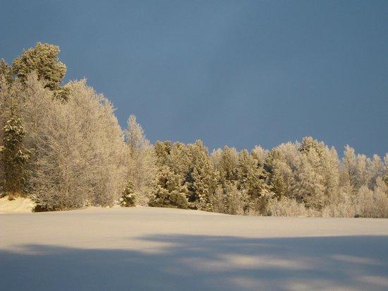 Savalen Fjellhotell & Spa: View