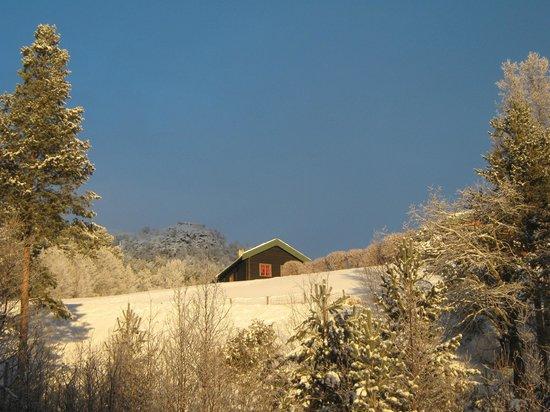 Savalen Fjellhotell & Spa: Tiny