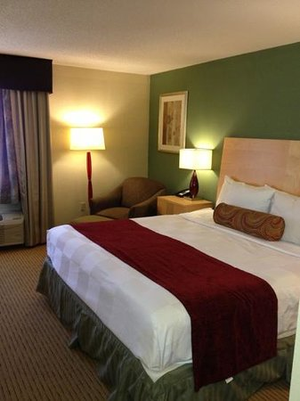La Quinta Inn Roanoke Salem:                   king room
