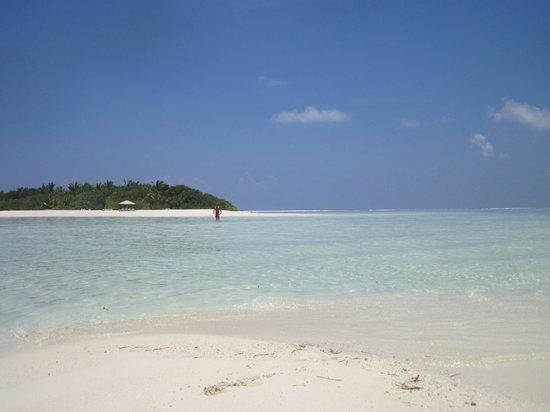 WhiteShell Beach Inn: Picnic island