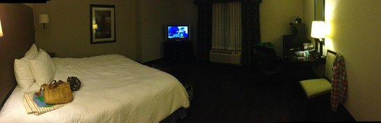 Hampton Inn & Suites Nashville - Downtown:                   King Size Bedroom