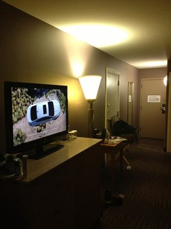 DoubleTree by Hilton Hotel Downtown Wilmington - Legal District: Room too large for the furniture