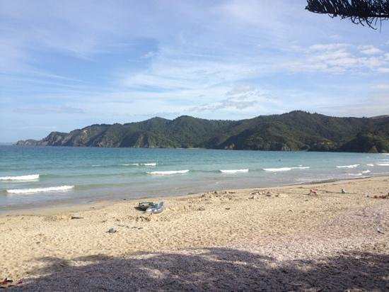 Matauri Bay Holiday Park:                   perfect absolute beachfront location