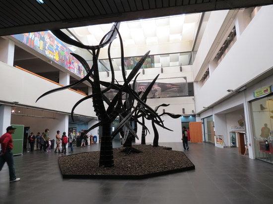 Universum: Museo de las Ciencias:                   Meseo de las Ciencias Universum