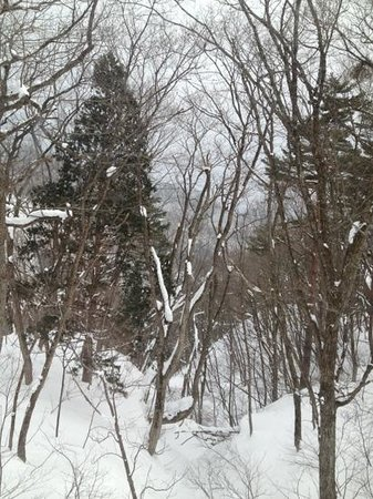 Hakuba House:                   view from room