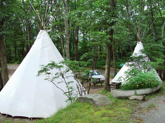 Sippewissett Campground and Cabins : Authentic Sioux tipis at Sippewissett Cabins & Campground