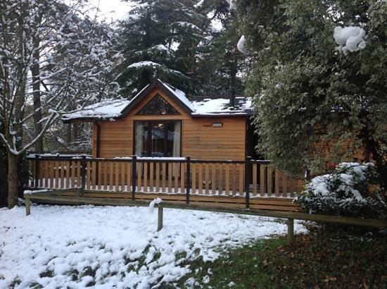 Фордингбридж, UK:                   sycamore Lodge