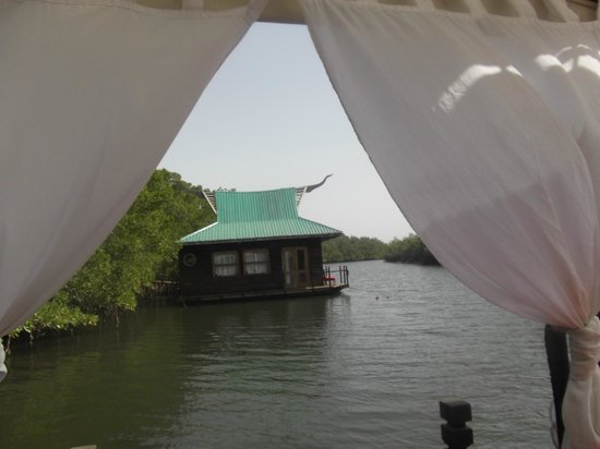 Mandina River Lodge:                   View from lodge