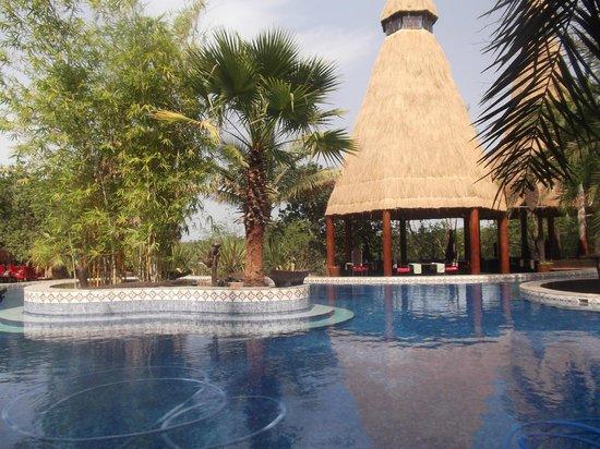 Mandina River Lodge:                   Swimming pool