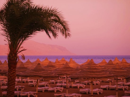 Baron Resort Sharm El Sheikh:                   Beach by sunset Tiran Island as background