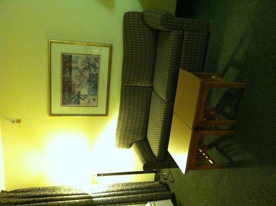 東麥迪森駐橋套房飯店照片