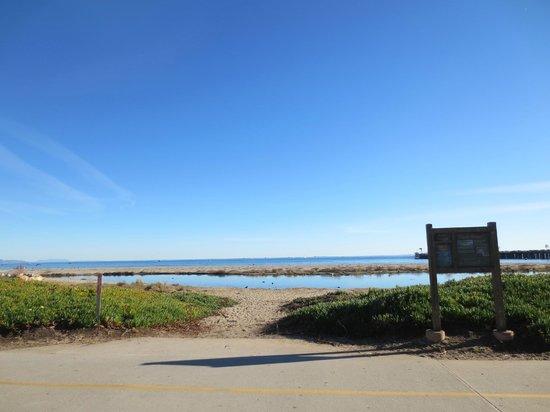Shoreline Park: Shoreline Park