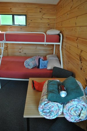 Fox Glacier TOP 10 Holiday Park: Bunks with provided linen (coke not included)