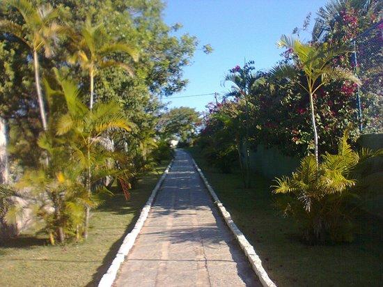 Ferradura Resort:                   Caminho que leva à praia, bem pertinho.