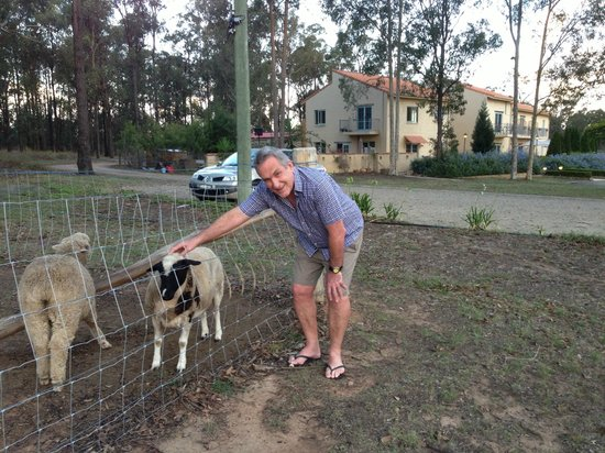 Villa Provence:                   the neighbours are friendly