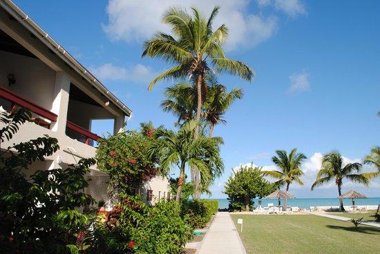 Antigua Village: giardino