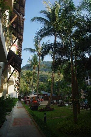 普吉卡馬拉海灘萬怡酒店照片