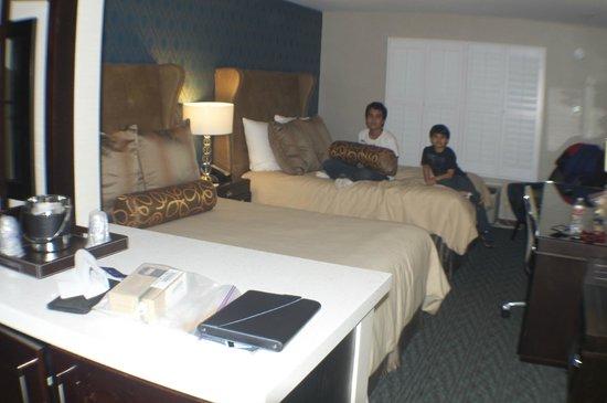 Ivy Hotel Napa:                   Moderno y limpio!