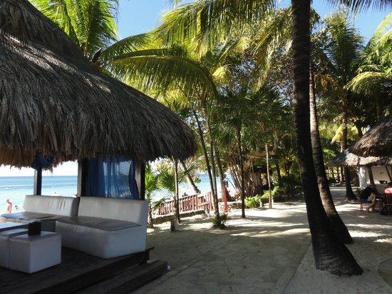 Mayan Princess Beach & Dive Resort: Very nice grounds and cabana
