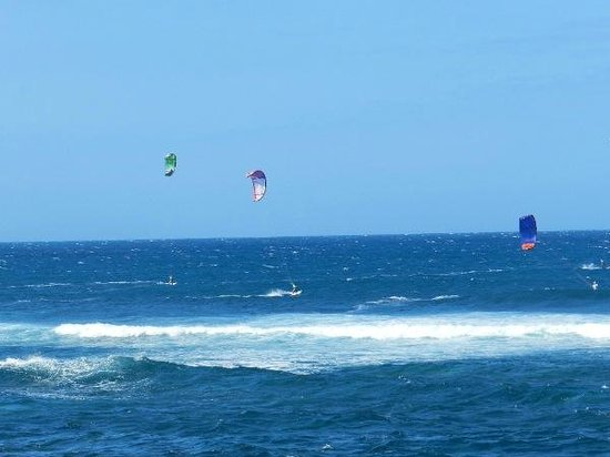 Ho'okipa Beach Park:                   Kite surfing competition at Ho'okipa Beach