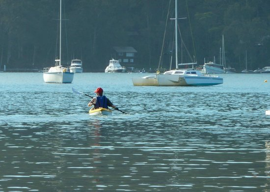Scotland Island Lodge:                   kayaking