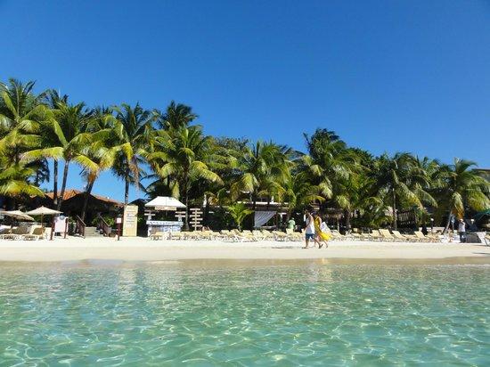 Mayan Princess Beach & Dive Resort: Absolutely beautiful beach