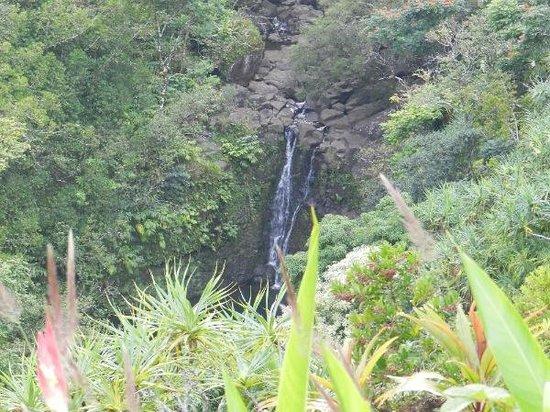 Waterfall Maui Garden of Eden - Picture of Garden of Eden Arboretum ...