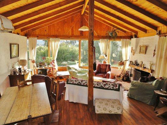 Las Vertientes Lodge: Living