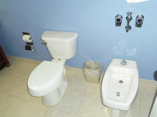 Commonwealth Park Suites Hotel: A bidet in our bathroom!