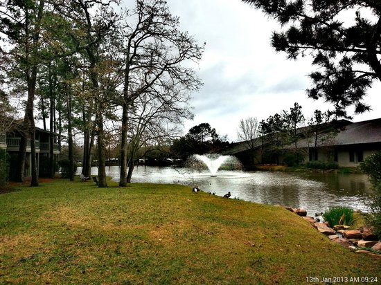 The Woodlands Resort & Conference Center : view of the pond beside the conference hall