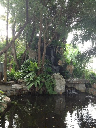 Horseshoe Point Resort & Country Club:                   Pond and Waterfull Feature with huge Carp