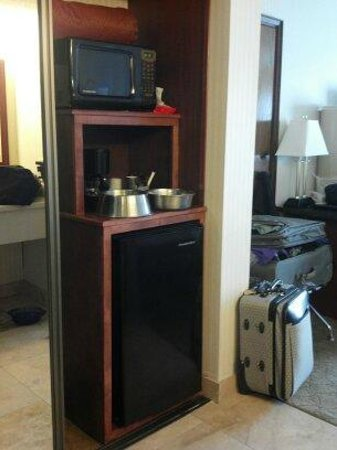 Red Lion Hotel on the River:                   Good size mini fridge and bonus microwave