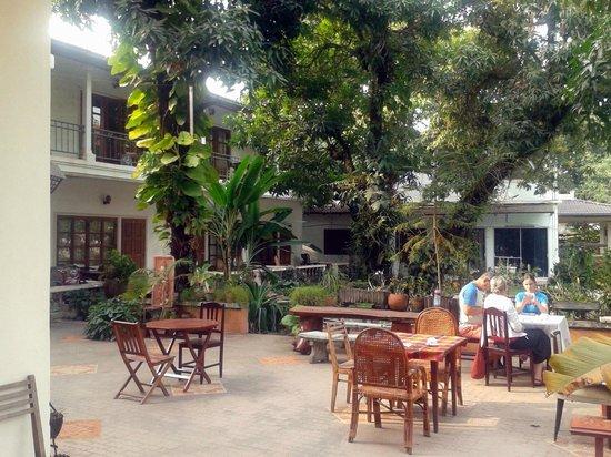 Villa Manoly : Garden