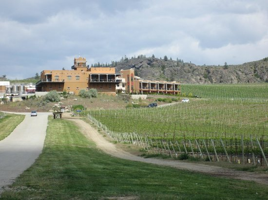 Burrowing Owl Estate Winery:                   On the way up