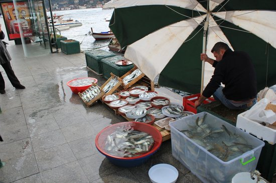 The Other Tour:                   Fresh fish as market opens.