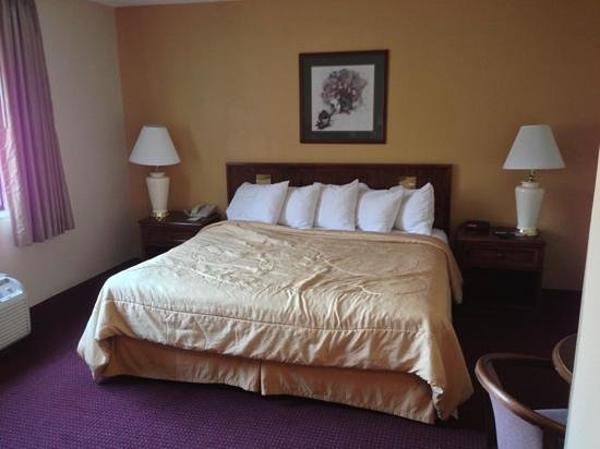 Econo Lodge Inn & Suites:                   king size bed